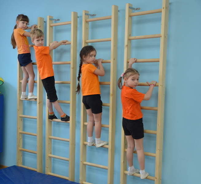 Дети на гимнастической стенке